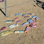 Healthy Places Kids Stay Busy with Spring Break Outdoor Events