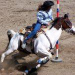 Colorado Junior Rodeo Finals in Lamar