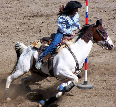 Colorado Junior Rodeo Finals In Lamar The Prowers