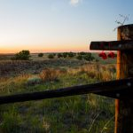 Sand Creek Massacre Observes Memorial Day Weekend with Special Evening Walk