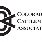 Initiative Opponents Statement on the Rehearing for Initiative 16