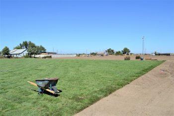 Fall Sod Covering Escondido Park for 2022